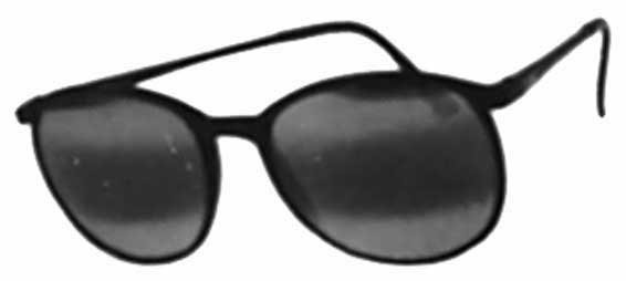 Image for Prestige Optics  Primo Carbolyt 9 Womens Sunglasses