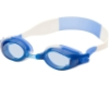 Hilco Leader Sports Anemone - Youth (7+ years) Goggles in Hilco Leader Sports Anemone - Youth (7+ years) Goggles