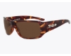 DSO Eyewear Anthem Sunglasses in AN-0814 Shiny Tortoise Amber Lens