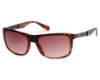 Guess GU 6843 Sunglasses in 56F Havana/Other/Gradient Brown