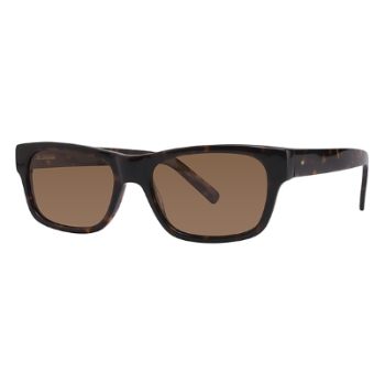 Vivid Polarized Sunglasses Vivid 779S Sunglasses