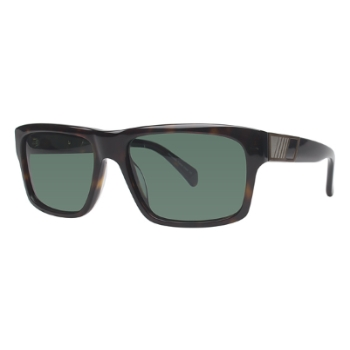 Wired 6603 Sunglasses