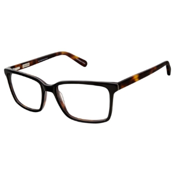 Cremieux William Eyeglasses