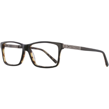 Apollo AP 175 Eyeglasses