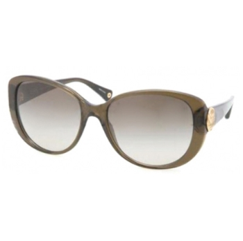 Coach HC8014 Sunglasses