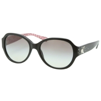 Coach HC8022B Sunglasses