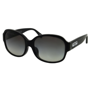 Coach HC8041F Sunglasses