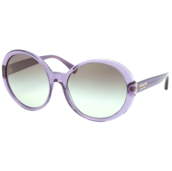 Coach HC8046F Sunglasses