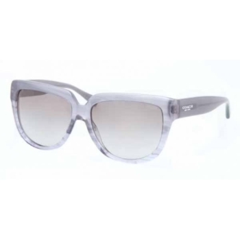 Coach HC8085 Sunglasses