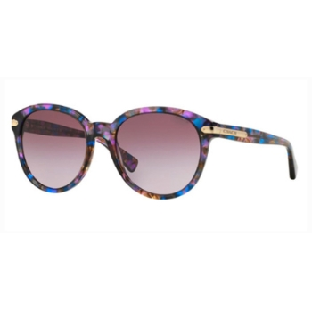 Coach HC8140 Sunglasses