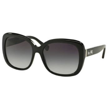 Coach HC8158 Sunglasses