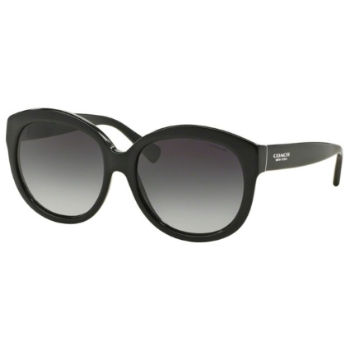 Coach HC8159F Sunglasses