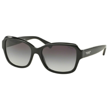 Coach HC8160F Sunglasses