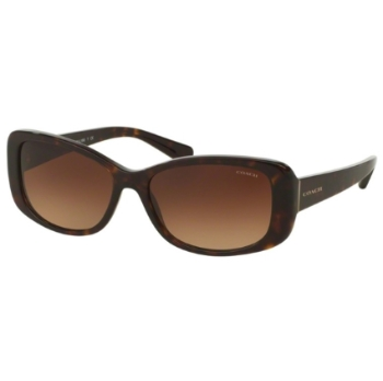 Coach HC8168 Sunglasses
