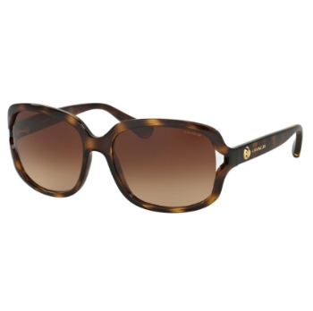 Coach HC8169 Sunglasses