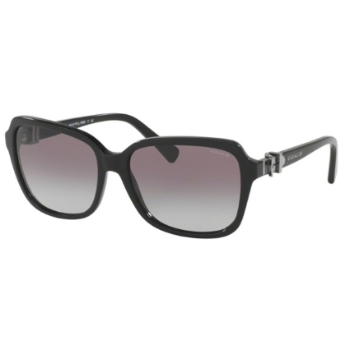 Coach HC8179F Sunglasses