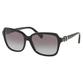 Coach HC8179 Sunglasses