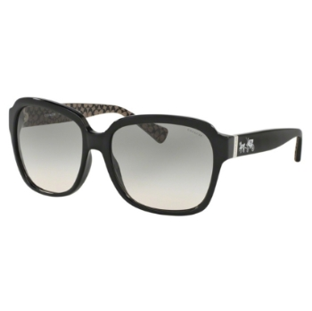 Coach HC8185F Sunglasses