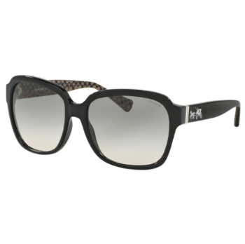 Coach HC8185 Sunglasses