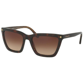 Coach HC8191 Sunglasses