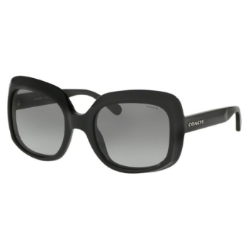 Coach HC8194F Sunglasses