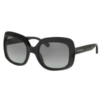 Coach HC8194 Sunglasses