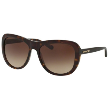 Coach HC8202 Sunglasses