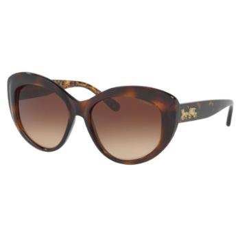 Coach HC8206F Sunglasses