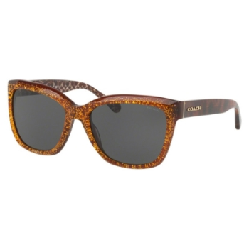 Coach HC8230F Sunglasses