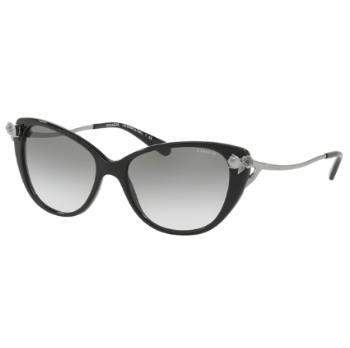 Coach HC8242B Sunglasses
