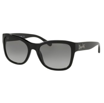 Coach HC8243F Sunglasses