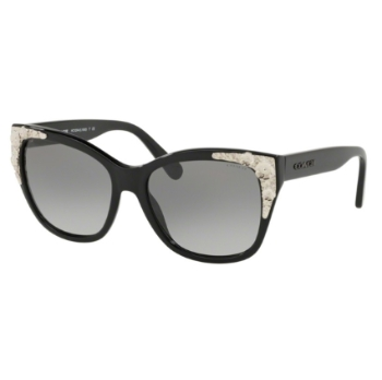 Coach HC8244 Sunglasses