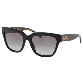 Coach HC8262F L1076 Sunglasses