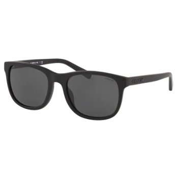 Coach HC8283U L1119 Sunglasses