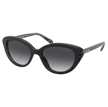 Coach HC8288 Sunglasses