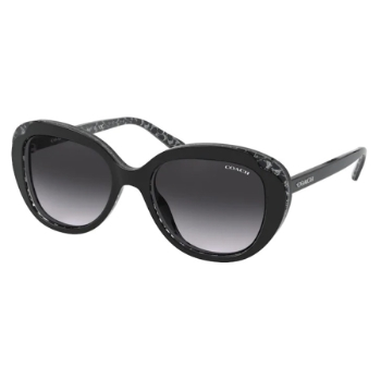 Coach HC8289F Sunglasses