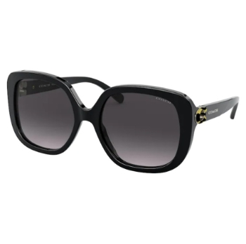 Coach HC8292 Sunglasses