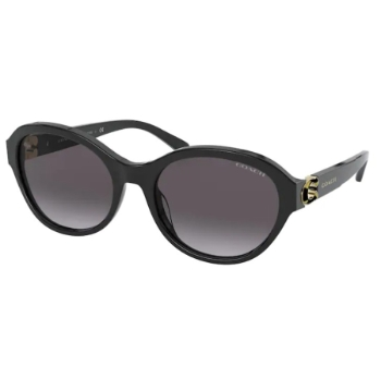 Coach HC8293 Sunglasses