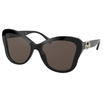 Coach HC8294 Sunglasses