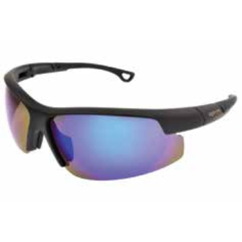 FGX Optical AE 23 Sunglasses