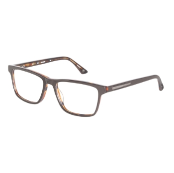 Hackett London HEK1169 Eyeglasses