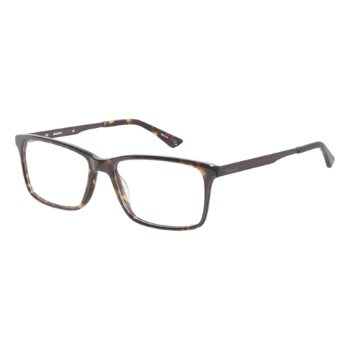 Hackett London HEK1162 Eyeglasses