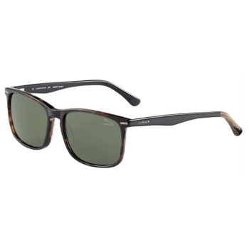 Jaguar Jaguar 37169 Sunglasses