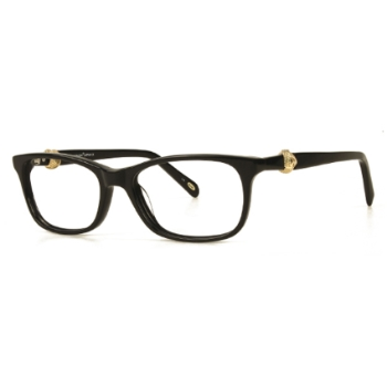 Konishi Acetate KA5792 Eyeglasses