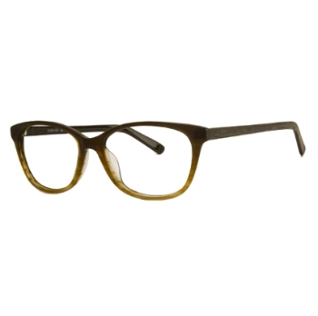 Konishi Acetate KA5816 Eyeglasses