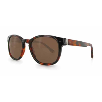 Matt Curtis TT521 Sunglasses
