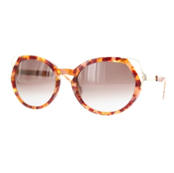Matttew Accona Sunglasses