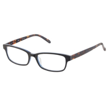 Bloom Optics BL PAULA Eyeglasses