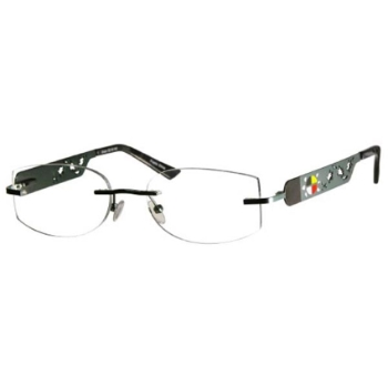 Native Pride Turtle Eyeglasses