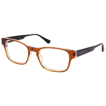 Perry Ellis PE 342 Eyeglasses
